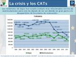la crisis y los cats