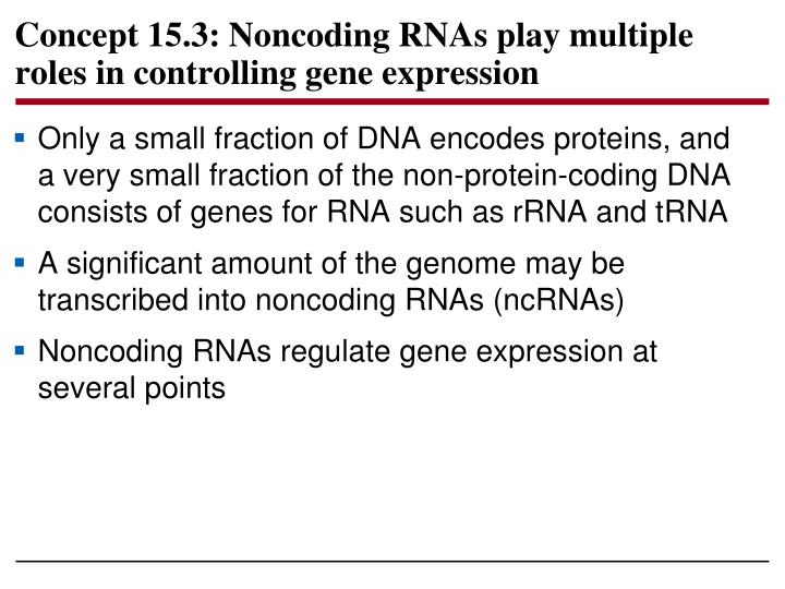 Concept 15.3: Noncoding RNAs play multiple roles in controlling gene expression
