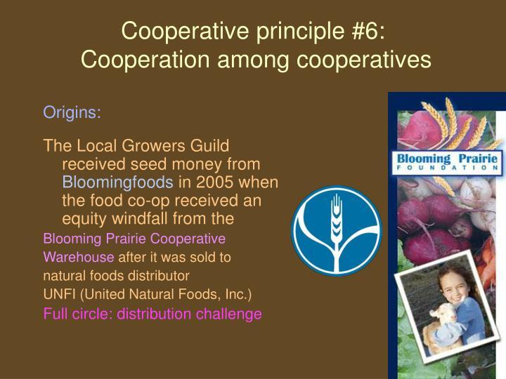 Cooperative principle #6: