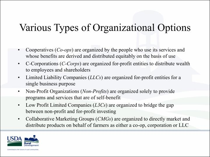 Various Types of Organizational Options