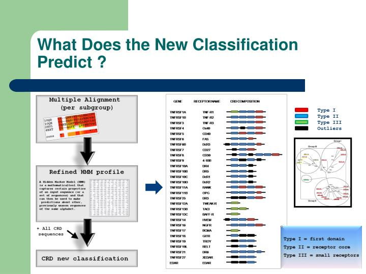 What Does the New Classification Predict ?