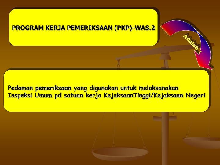 PROGRAM KERJA PEMERIKSAAN (PKP)-WAS.2