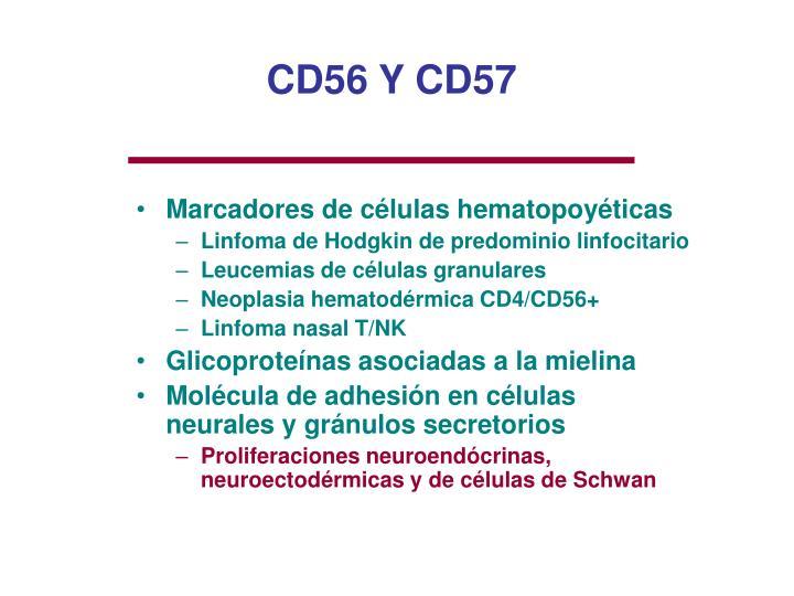 CD56 Y CD57