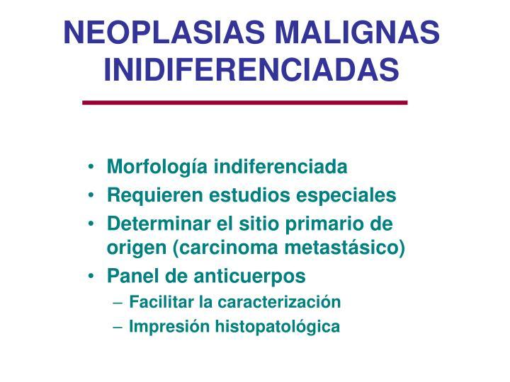 NEOPLASIAS MALIGNAS INIDIFERENCIADAS
