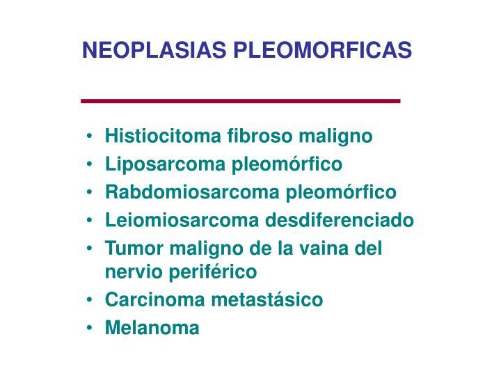NEOPLASIAS PLEOMORFICAS