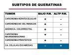 subtipos de queratinas