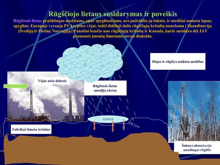 Rūgščiojo lietaus susidarymas ir poveikis