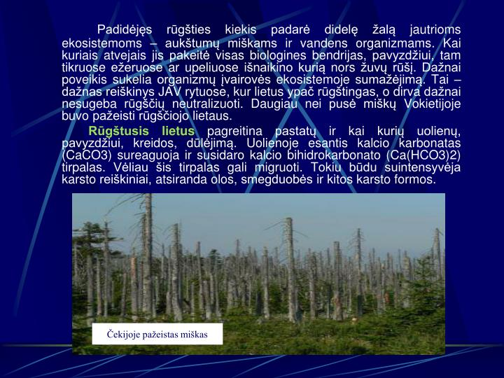 Padidėjęs rūgšties kiekis padarė didelę žalą jautrioms ekosistemoms – aukštumų miškams ir vandens organizmams. Kai kuriais atvejais jis pakeitė visas biologines bendrijas, pavyzdžiui, tam tikruose ežeruose ar upeliuose išnaikino kurią nors žuvų rūšį. Dažnai poveikis sukelia organizmų įvairovės ekosistemoje sumažėjimą. Tai – dažnas reiškinys JAV rytuose, kur lietus ypač rūgštingas, o dirva dažnai nesugeba rūgščių neutralizuoti. Daugiau nei pusė miškų Vokietijoje buvo pažeisti rūgščiojo lietaus.