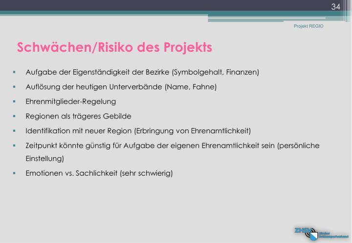Schwächen/Risiko des Projekts