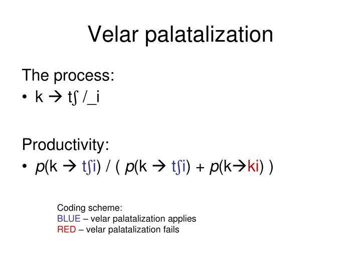 Velar palatalization