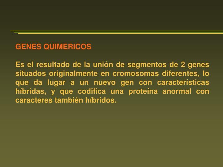 GENES QUIMERICOS