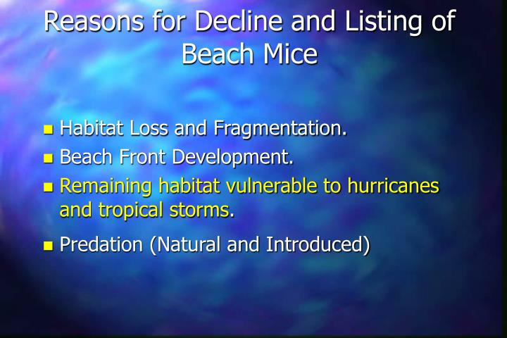Reasons for Decline and Listing of Beach Mice