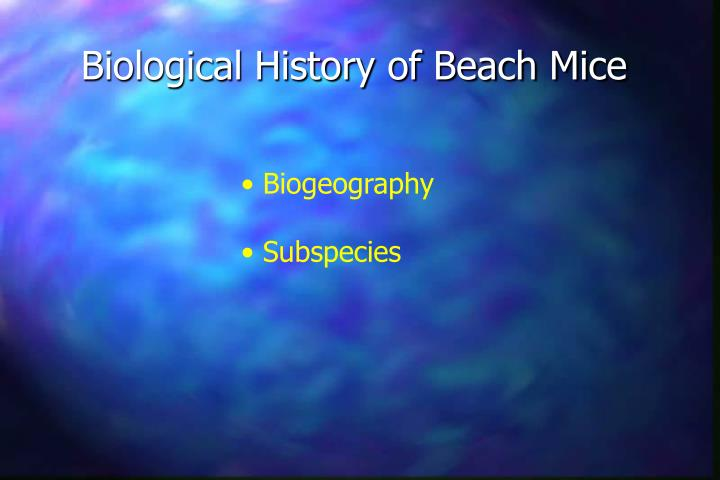 Biological History of Beach Mice