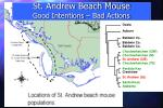 st andrew beach mouse good intentions bad actions