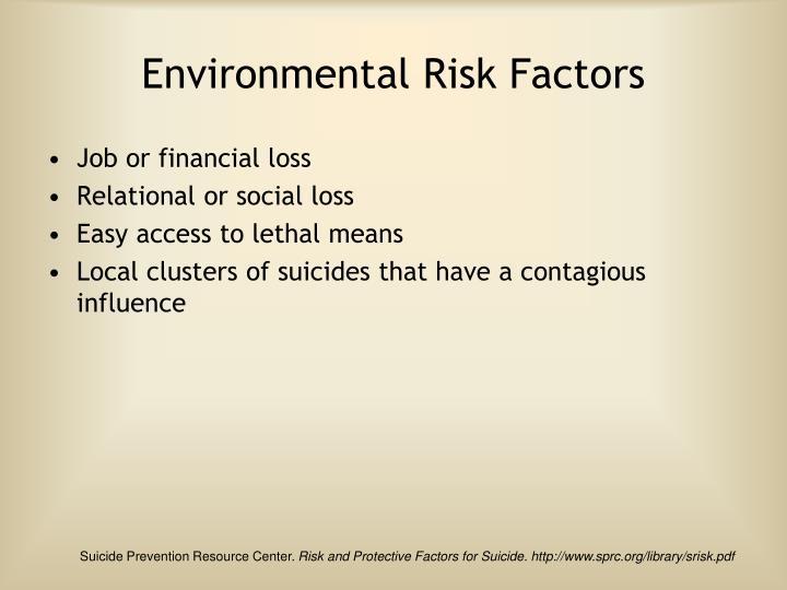 Environmental Risk Factors
