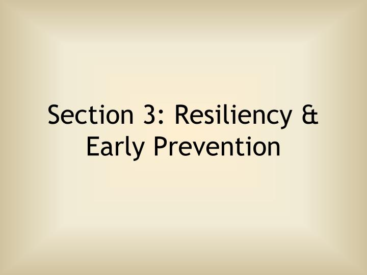 Section 3: Resiliency &