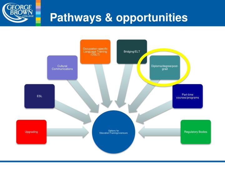 Pathways & opportunities