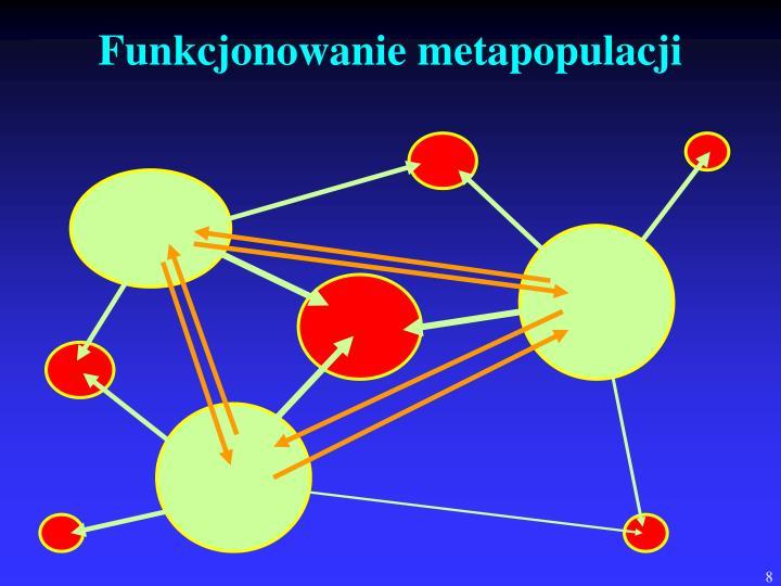 Funkcjonowanie metapopulacji