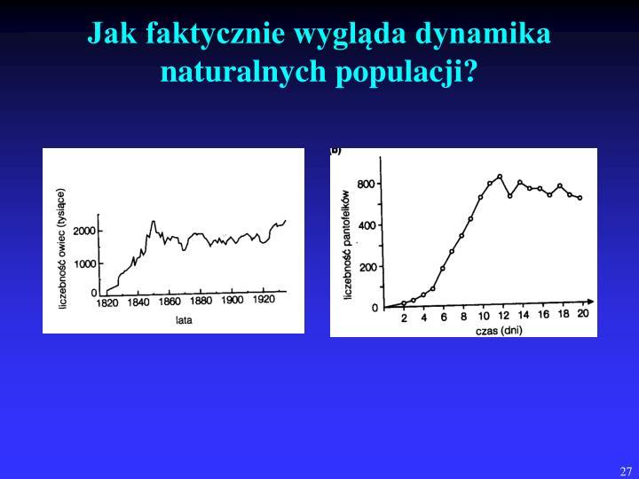 Jak faktycznie wygląda dynamika naturalnych populacji?
