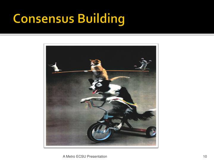 Consensus Building