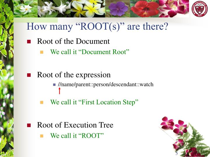 "How many ""ROOT(s)"" are there?"