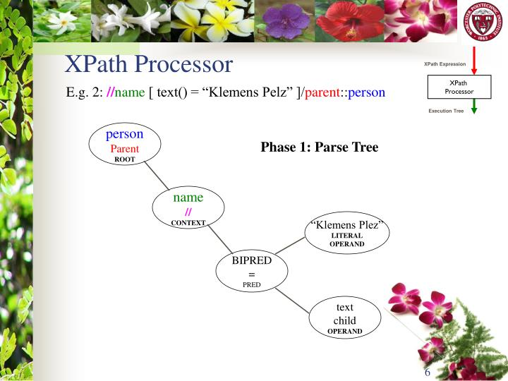 XPath Expression