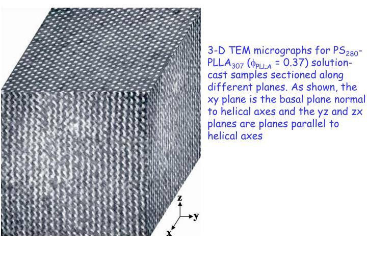 3-D TEM micrographs for PS