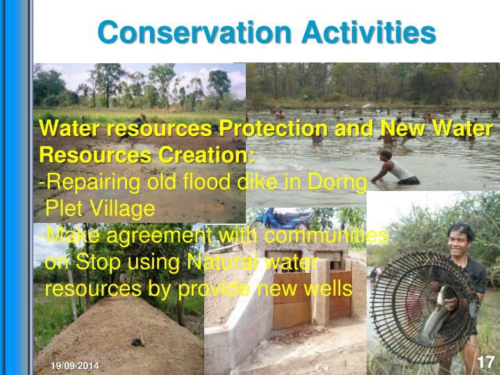 Conservation Activities