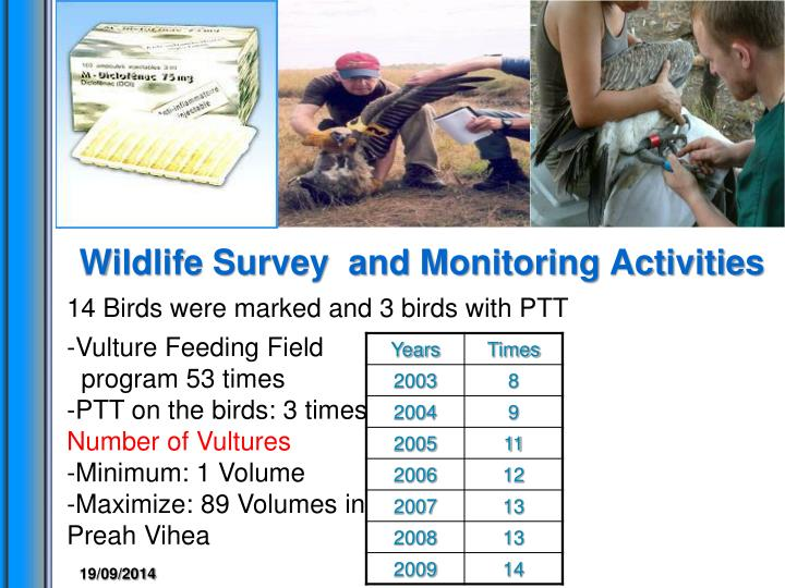 Wildlife Survey  and Monitoring Activities