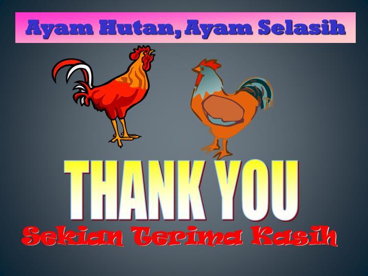 Sekian Terima Kasih