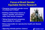focus of brazil gender equitable norms research