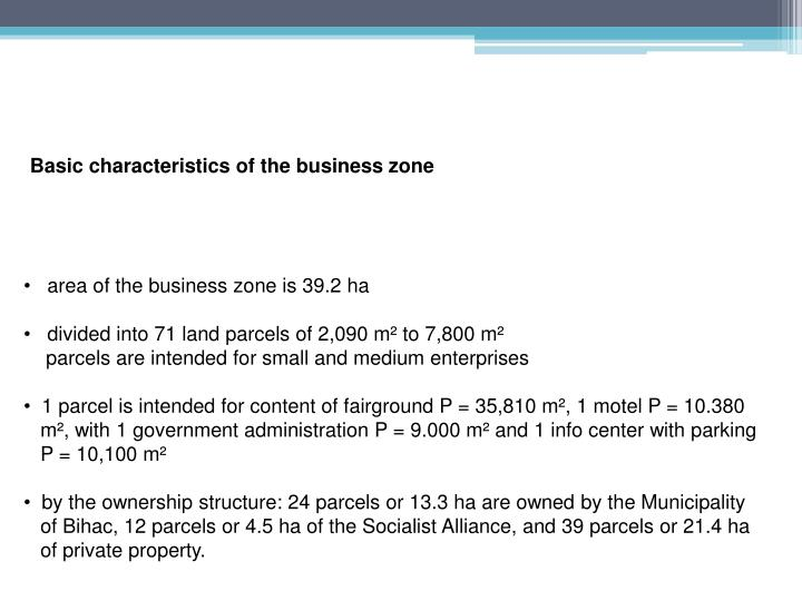 Basic characteristics of the business zone