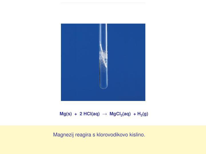 Mg(s)  +  2 HCl(aq)