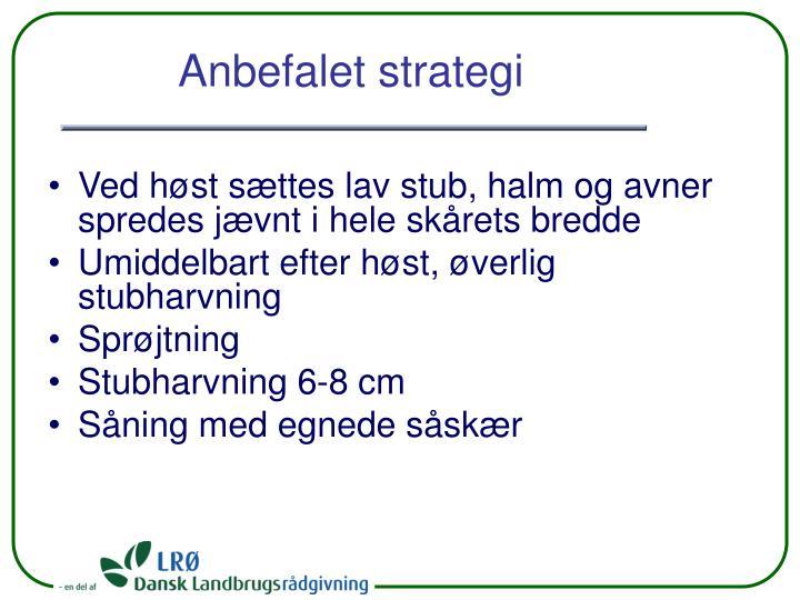 Anbefalet strategi
