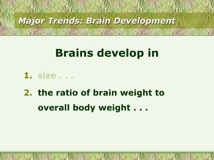 Major Trends: Brain Development