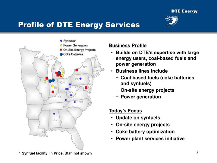 Profile of DTE Energy Services