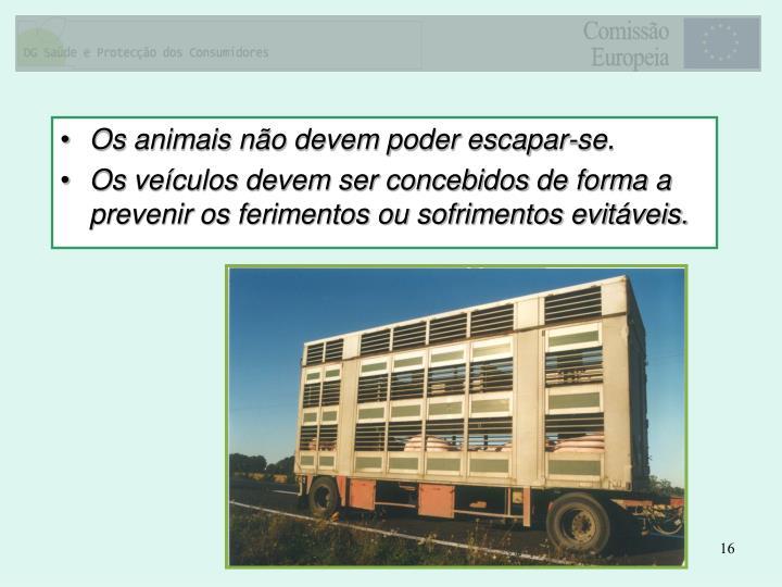 Os animais não devem poder escapar-se.