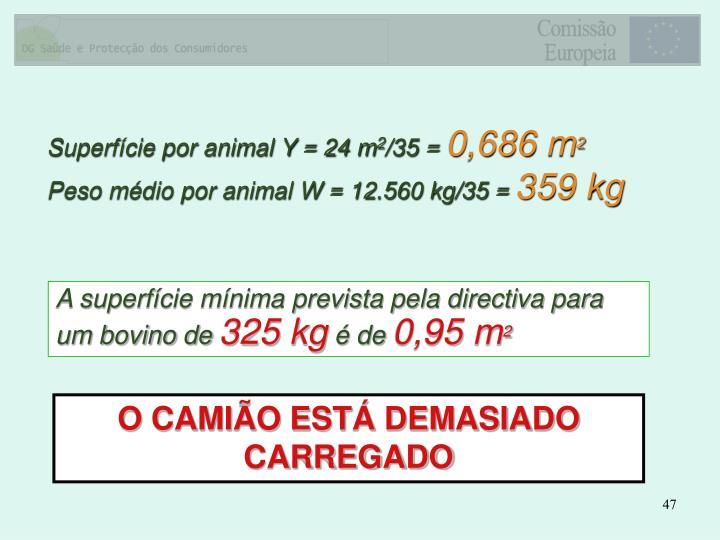 Superfície por animal Y = 24 m