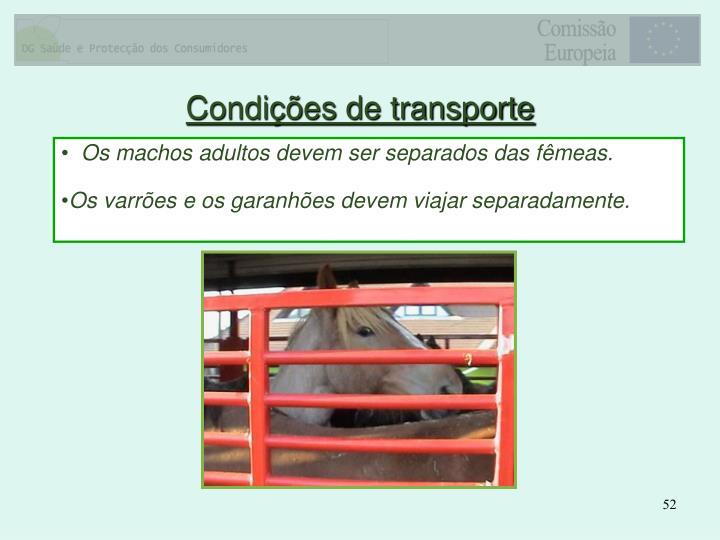 Condições de transporte