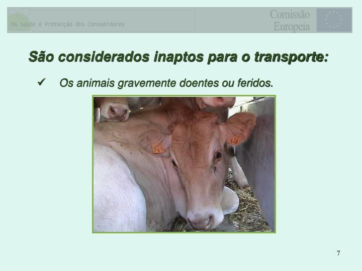 Os animais gravemente doentes ou feridos.