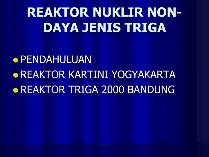 REAKTOR NUKLIR NON-DAYA JENIS TRIGA