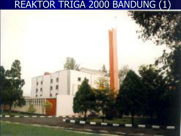 REAKTOR TRIGA 2000 BANDUNG (1)