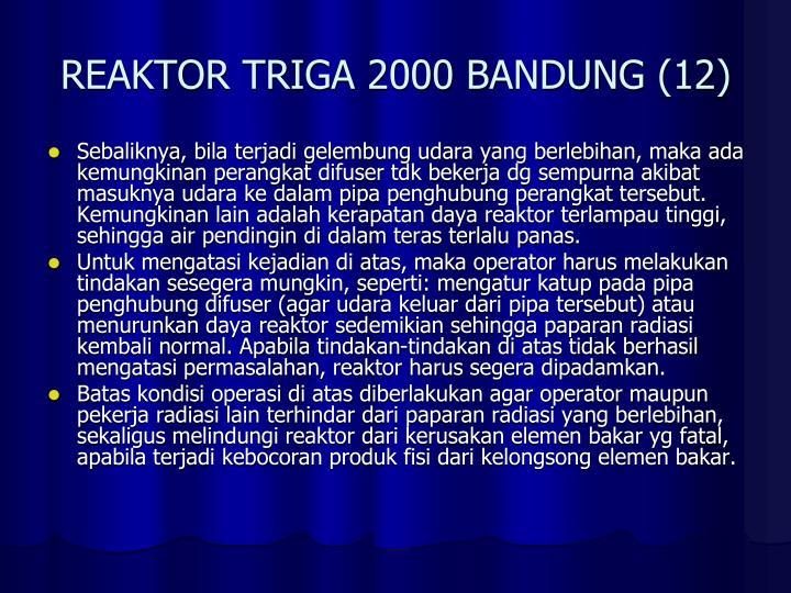 REAKTOR TRIGA 2000 BANDUNG (12)