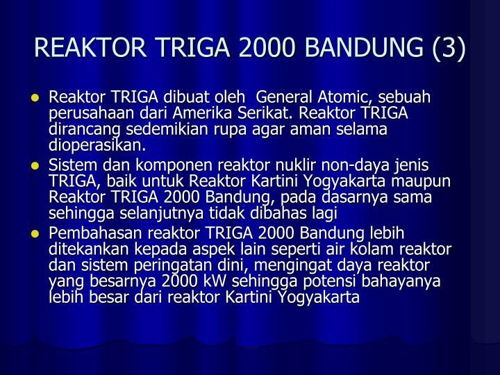 REAKTOR TRIGA 2000 BANDUNG (3)