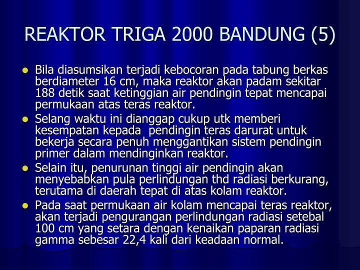 REAKTOR TRIGA 2000 BANDUNG (5)