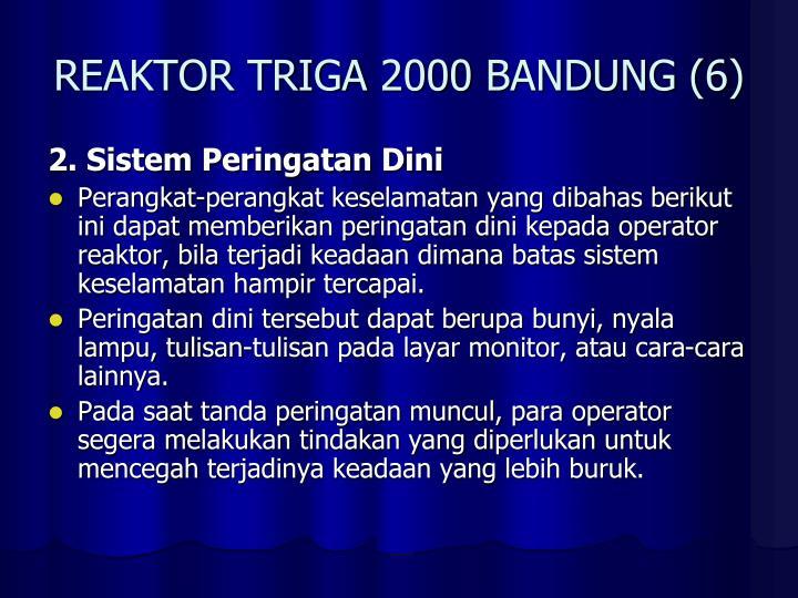 REAKTOR TRIGA 2000 BANDUNG (6)