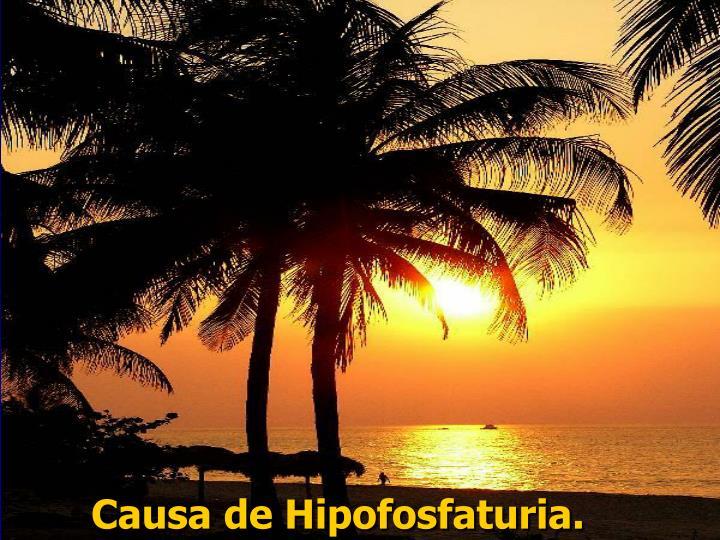 Causa de Hipofosfaturia.