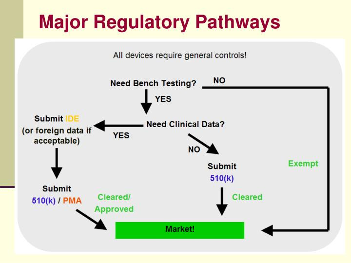 Major Regulatory Pathways