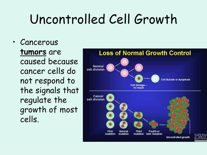 Uncontrolled Cell Growth