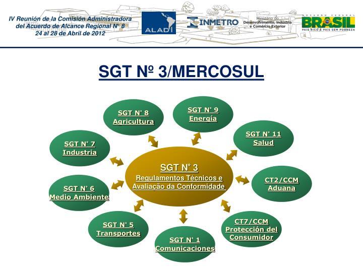 SGT N 3/MERCOSUL